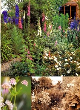 a simpler life el pocito gardens illustrated november 2000 06