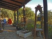 a simpler life el pocito patio 06