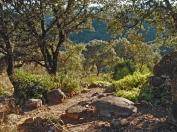a simpler life el pocito rock garden 03