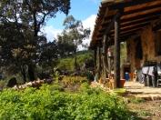 a simpler life el pocito tea garden 03